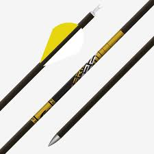 Gold Tip 22 Series Pro Target Arrows