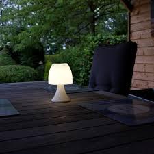 Licht Snoer Met Maan Lampen Op Zonneenergie Globosplazacom