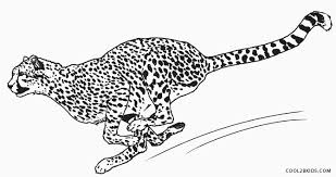 Small Picture Printable Cheetah Coloring Pages For Kids Cool2bKids