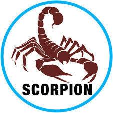 """Résultat de recherche d'images pour """"image scorpion"""""""