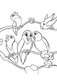 Small Picture Five Birds Cute Coloring Pages Joselin Pinterest Bird Adult