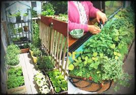 vegetable garden ideas backyard raised easy planner south florida s ing diy layout