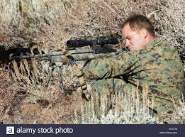 Marine Corps Scout Sniper Us Marine Corps Scout Sniper Aiming M14 Designated Marksman Rifle