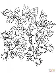 flowers coloring page. Simple Page Roses Flowers Coloring Page Free Printable Pages In Flower   Free Flower Coloring Pages Throughout O