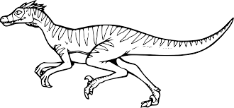 Coloriage Dinosaure Velociraptor Imprimer