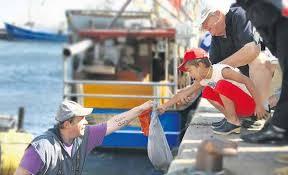 Αποτέλεσμα εικόνας για Αλιείς και Αλιεύματα. Θερμοκοιτίδα