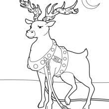 Small Picture Caribou Coloring pages Drawing for Kids Kids Crafts and