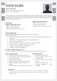Auditing Resumes Audit Manager Resume Templates For Ms Word Word Excel