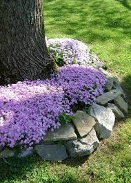 Small Picture 18 Genius Flower Beds Around Trees You Need To See Landscaping