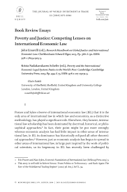 book review essay poverty and justice competing lenses on preview magnify