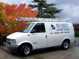 pest control seattle wa.  Pest Willards Pest Control Kirkland Wa Inside Seattle Wa T
