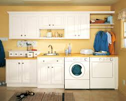 painting shelves ideasAccessories  Excellent Laundry Room Storage Ideas Aesops Gables