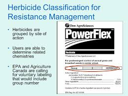 Herbicide Groups Chart How Herbicides Work In Plants Herbicide Symptomology Ppt