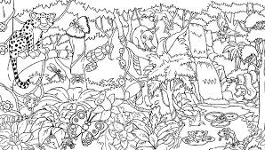 Small Picture Amazon rainforest coloring pages with animals ColoringStar