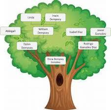 Resultado de imagen para arbol genealogico