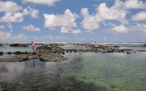 Snorkeling Kapoho Tide Pools Destroyed By Lava In June 2018