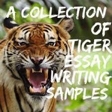 tiger essay topics titles examples in english  tiger essay