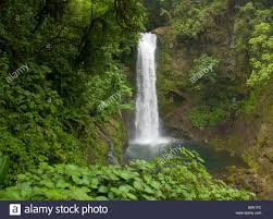 costa rica la paz waterfall gardens spectacular magia blanca waterfalls surrounded by lush jungle rainforest la paz river