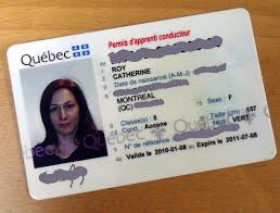 Quebec Driver Licence Driver Quebec Driver Licence Licence