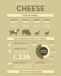 Everybody Say Cheese Visually