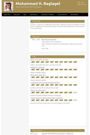 Security Resume Samples Visualcv Resume Samples Database