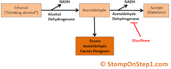 Disulfiram Reaction Alcoholism Ethanol Metabolism Methanol Poisoning Stomp On Step1