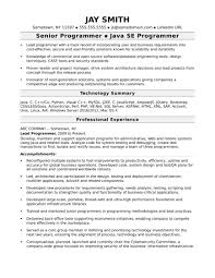 Programmer Resume Resumes Template Free Summary Examples Word