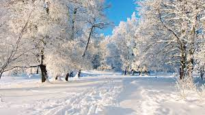 2560x1440 A Dreamy Winter Scenery ...