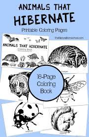free printable animals that hibernate in winter coloring book