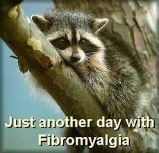Bildresultat för bad fibroday