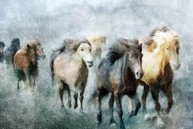 saatchi art artist katrina jones painting wild horses running art