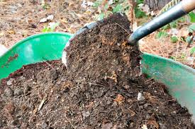 Image result for compost photo