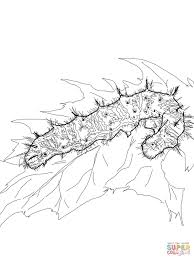 Small Picture Painted Lady Caterpillar coloring page Free Printable Coloring Pages
