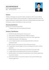 mis manager resume mis officer sample resume podarki co