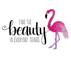 Quote Art Magnificent Amazon Beauty Quote 48x48 Inch Wall Decor Flamingo Wall Art