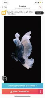 How To Get Apple S Live Fish Wallpapers ...