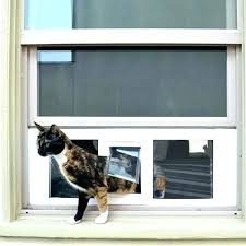 cat door cat door cover secure pet ideal fast sash doors for windows sliding glass