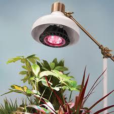 lighting indoor plants. brilliant lighting ledgrowlight inside lighting indoor plants