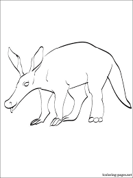 Small Picture Anteater Coloring Pages GetColoringPagescom
