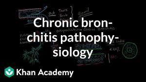 Chronic Bronchitis Pathophysiology Video Khan Academy