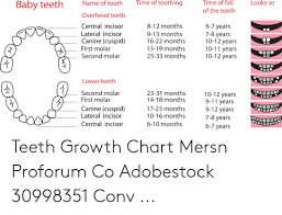 Teeth Growth Chart Time Of Toothing Looks So Time Of Fall Name Of Tooth Baby
