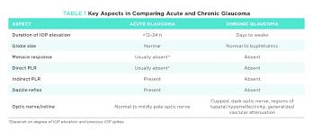Acute Glaucoma A True Emergency Todays Veterinary Practice