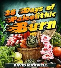 kindle book free 28 days of paleolithic burn paleo t book 1 by