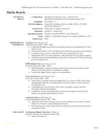 Sample Programmer Resume It Security Resume Examples With Brilliant ...