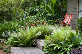 Small Picture sunnybank garden of rene and carolyn hundscheidt best tropical