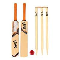 XXXX GOLD Beach Cricket Bat And Stumps Set  EBayBackyard Cricket Set