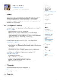 Resume Formats Chronological Functional Combo 2018