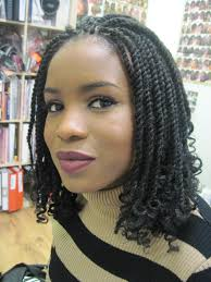 Twist Braids Hair Style pictures of african braids and twists african twist braid hairstyles 8344 by wearticles.com
