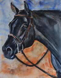 paintings for black horse head painting