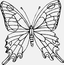 Printable butterfly colored salt craft. Printable Butterfly Pictures Coloring Home
